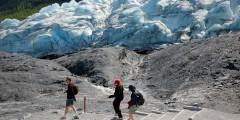Visit Exit Glacier