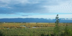 Palmer Hay Flats State Game Refuge