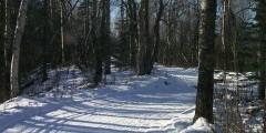 Crevasse Moraine Trail System