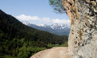 Perseverance-Trail-Perseverance_Trail-o2cmvm