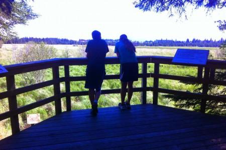 Calvin & Coyle Nature Trail