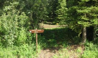 Copper-River-Trail-02-mxq4yi