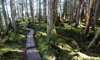 Haystack-Trail-01-mxq67g