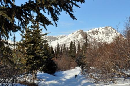 Hemlock Knob Trail
