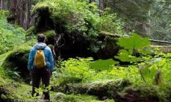 Heney-Ridge-Trail-01-mxq68i