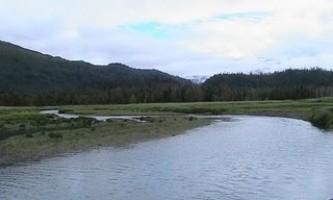 Humpy-Creek-Trail-01-mxq6bs