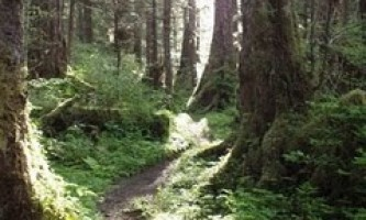 Indian-River-Trail-01-mxq6cz