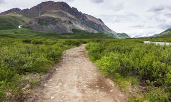 Landmark-gap-lake-trail-north-denali-highway-_16A3495-o9f4r7