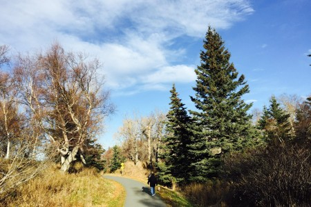 Rabbit Creek Park Trail