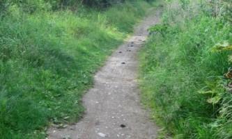 Rabbit-Lake-Trail-nhvs5r