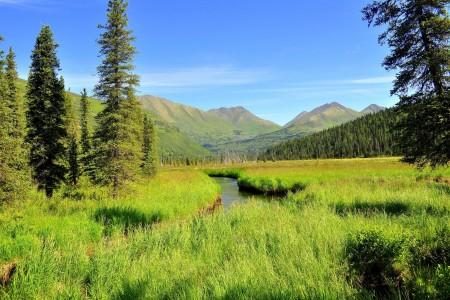 Resurrection River Trail