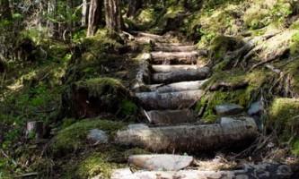 Sealion-Cove-Trail-nhvu7d