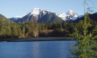 Starrigavan-Valley-Trail-nhvwck