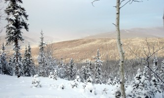 Stiles-Creek-Trail-nhvwd6