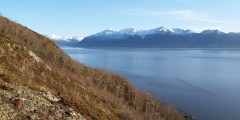 Turnagain Arm Trail