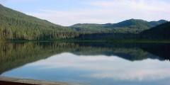 Windfall Lake Trail