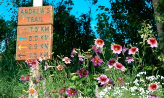 Kincaid-Park-04-mxm0xg