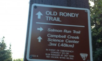 Campbell_Tract_Salmon_Run_Trail_26_Observation_Deck-04-mxm36h
