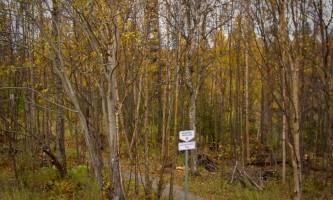 Copy-of-MOA-Parks-Photos-2-Old Rabbit_Creek_Park_01-pd5lp7