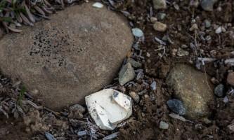 Landmark-gap-lake-trail-north-archaelogical-site-_16A3529-o9f4sy