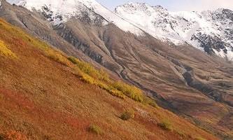 Lazy-Mountain-Trail-Lazy_Mountain_Trail-pbbac4