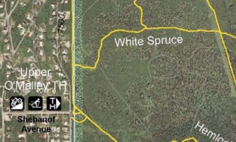 White_Spruce_Trail-nhvypc
