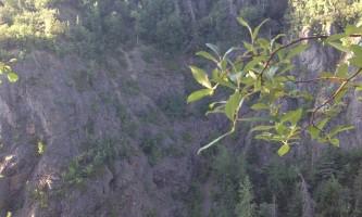 Campbell_Creek_Gorge-03-mxm332