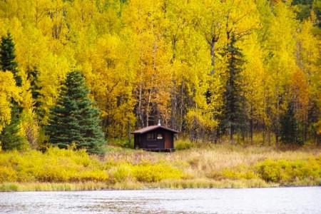 Swan Lake Cabin Seward