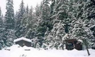 Peterson lake cabin 02 mqicnz