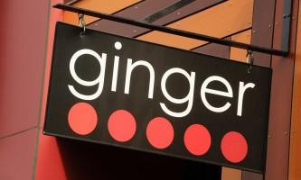 Ginger all 01 mxlzyd