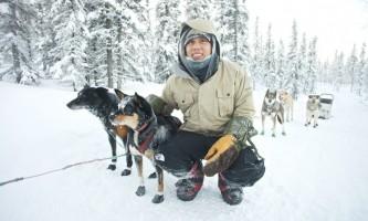Black spruce dog sledding sledding 17 o164kx