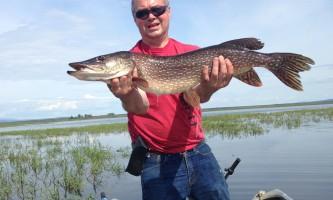 Summer alaska fishing guide copy oxrv2z