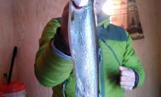 Fishing fat bow pi3b83