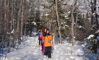 Denali winter drive adventure dnp snowshoeing 2017 r weeden p08nv3