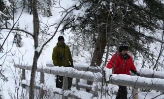 Denali winter drive adventure t denali winter taiga trail bridge 2017 r weeden p08nv0
