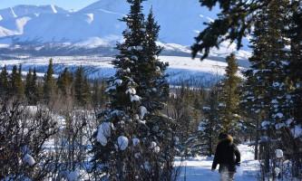 Denali winter drive adventure dnp snowshoeing at mountain vista 2017 r weeden p08nv5