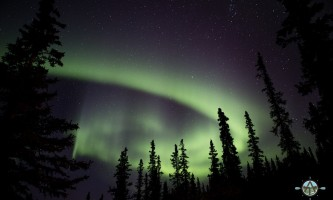 Traverse alaska winter activities mf201609020006 pjyesj