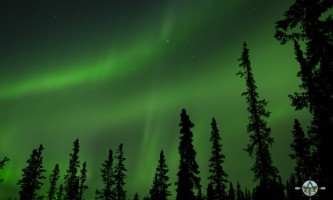 Traverse alaska winter activities mf201609020005 pjyeso
