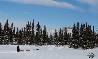 Traverse alaska winter activities mf201703020003 pjyet9