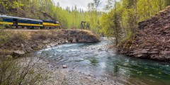 Hurricane Turn Train (Talkeetna to Hurricane Gulch)