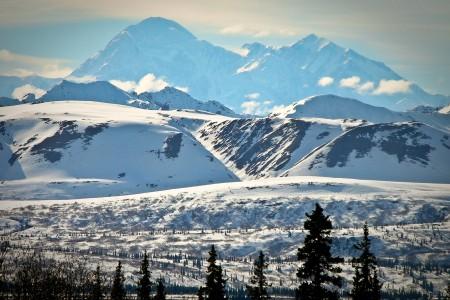 Denali (McKinley) Viewpoint