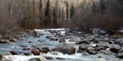 Little Susitna River Overlook