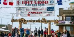 Iditarod Burled Arch
