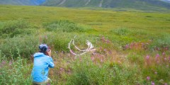 Northern Alaska Tour Company Arctic & Arctic Circle Tours