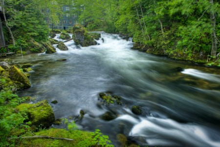 Ketchikan Creek & Falls
