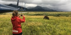 Alaska Ultimate Safaris Helicopter Bear Viewing