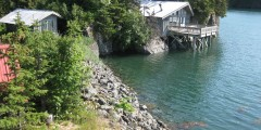 Alaska Dancing Eagles Vacation Cabin Rental
