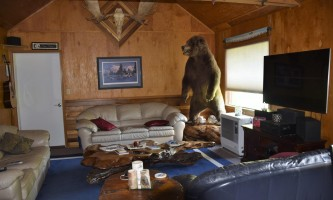 Northwoods-Lodge-living_room_2018-pfb6e4