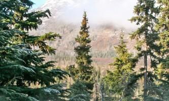 Alaska-Heavenly-Alaska Heavenly Lodge12-p0jnxt