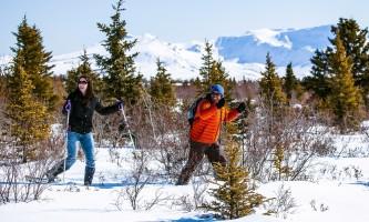 Murie snowshoeing alaska ultimate iditarod winter wonderland escorted tour 980